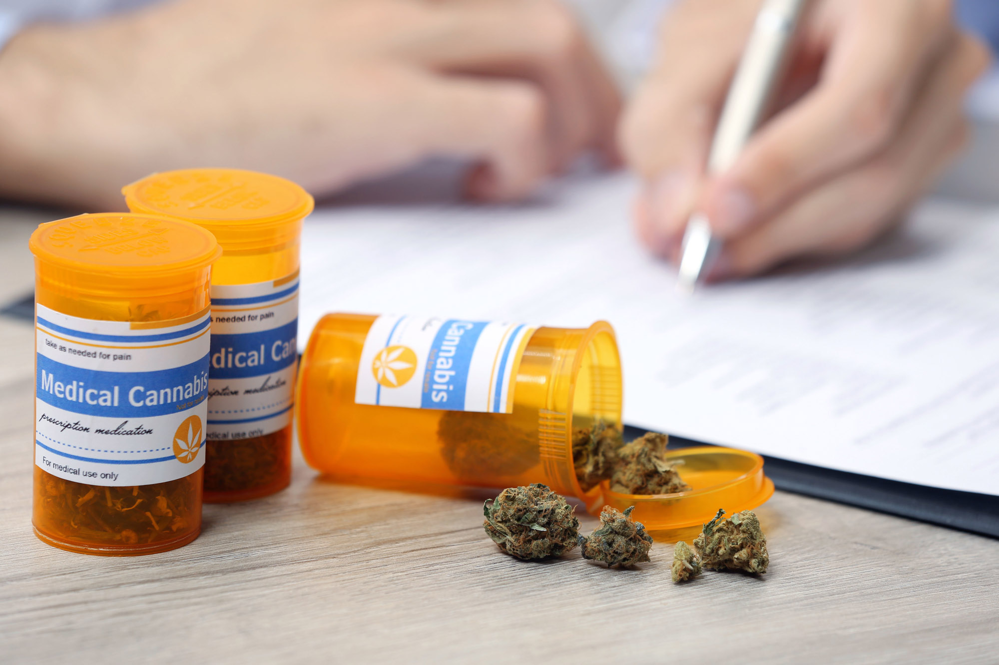 A Medical Cannabis Doctor Can Help Manage Your Medical Condition